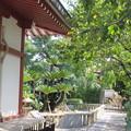 妙国寺(堺市堺区)