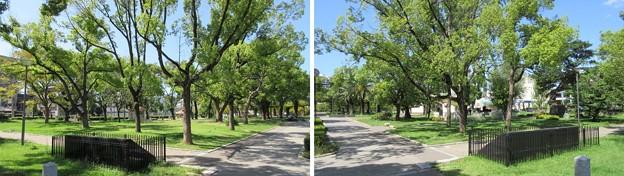 ザビエル公園(堺市堺区)