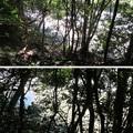 Photos: 芥川山城(高槻市)北登城路