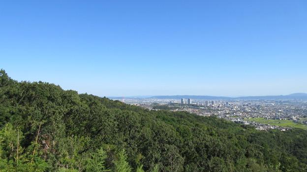 芥川山城(高槻市)西郭群 本郭下段より南東