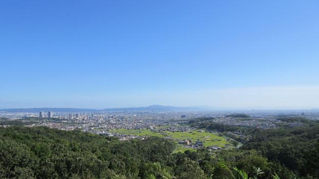 Photos: 芥川山城(高槻市)西郭群 本郭下段より南南東