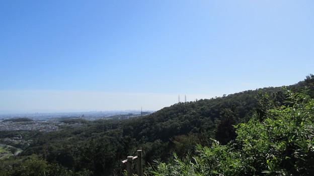 芥川山城(高槻市)西郭群 本郭下段より南南西