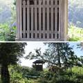 Photos: 芥川山城(高槻市)西郭群 本郭御殿 小祠