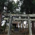 Photos: 諏訪大社 下社秋宮(下諏訪町)八幡社