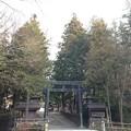 諏訪大社 下社秋宮(下諏訪町)