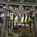 諏訪大社 下社秋宮(下諏訪町)千尋社