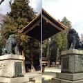 Photos: 諏訪大社 下社秋宮(下諏訪町)神楽殿狛犬