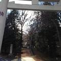 Photos: 13.12.12.諏訪大社 上社前宮(茅野市)