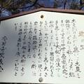 13.12.12.諏訪大社 上社前宮(茅野市)クネの跡