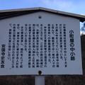 13.12.12.諏訪大社 上社前宮(茅野市)