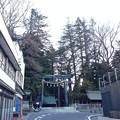 Photos: 諏訪大社 上社本宮(諏訪市)東参道鳥居