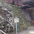 Photos: 高島城址(諏訪市立高島公園)