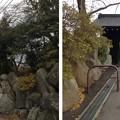 Photos: 13.12.12.高島城址(諏訪市立高島公園)