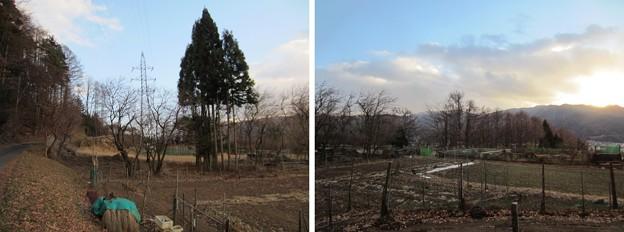 Photos: 13.12.12.上原城諏訪氏館跡(茅野市)