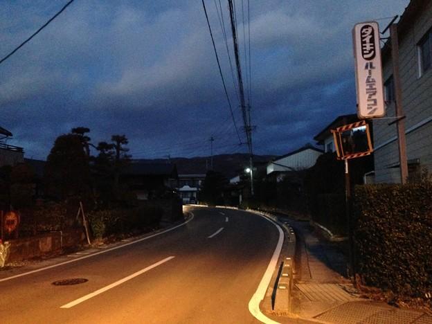 Photos: 金子城(諏訪市)道祖神より北東