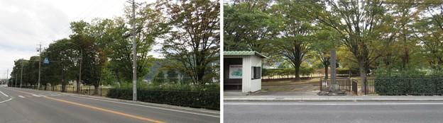 古 信濃国分寺跡(上田市)