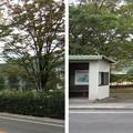 Photos: 古 信濃国分寺跡(上田市)
