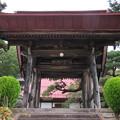 Photos: 雲興寺(佐久市)