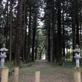 新海三社神社(佐久市)