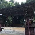 新海三社神社(佐久市)中本社