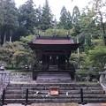 新海三社神社(佐久市)東本社