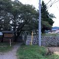 Photos: 龍岡城(佐久市)北虎口