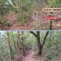 Photos: 葛尾城(坂城町)段郭