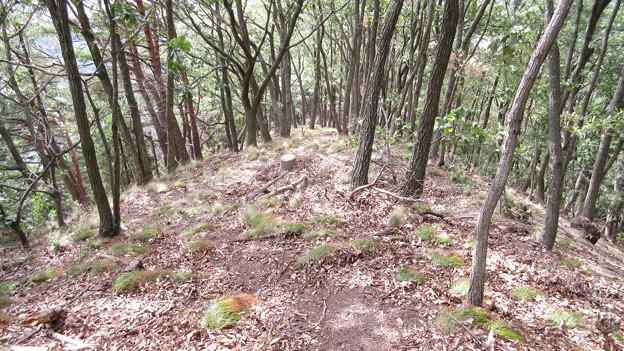 姫城接続路(長野県埴科郡坂城町)