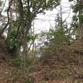 Photos: 姫城(坂城町)堀切