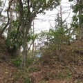 姫城(坂城町)堀切