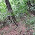 Photos: 岩崎城・姫城接続路(坂城町)終了
