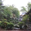 Photos: 温泉寺(諏訪市)庭園