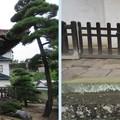 Photos: 温泉寺(諏訪市)経蔵