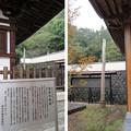 Photos: 温泉寺(諏訪市)御柱