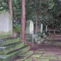 Photos: 温泉寺(諏訪市)諏訪家墓所