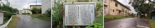 Photos: 高島古城(諏訪市)主郭