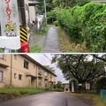 Photos: 高島古城(諏訪市)主郭北面
