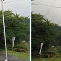 Photos: 高島古城(諏訪市)主郭より南