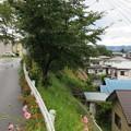 Photos: 高島古城(諏訪市)主郭東面