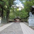 下社 春宮(下諏訪町)