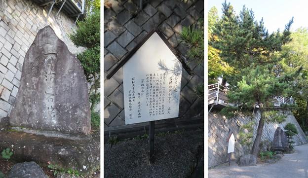 下社 春宮(下諏訪町)万治の石仏参道