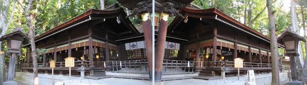 下社 秋宮(下諏訪町)片拝