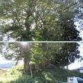 Photos: 青塚古墳(下諏訪町)