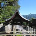 Photos: 上社 本宮(諏訪市中洲)手水舎