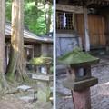 Photos: 上社 本宮(諏訪市中洲)摂末社遥拝所