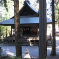 Photos: 上社 本宮(諏訪市中洲)神楽殿