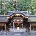 Photos: 上社 本宮(諏訪市中洲)拝殿