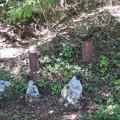 Photos: 法華寺/上社神宮寺跡(諏訪市)墓碑