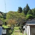 Photos: 法華寺/上社神宮寺跡(諏訪市)仁王門跡前・東参道