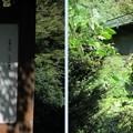 Photos: 巴ケ淵(木曽町)